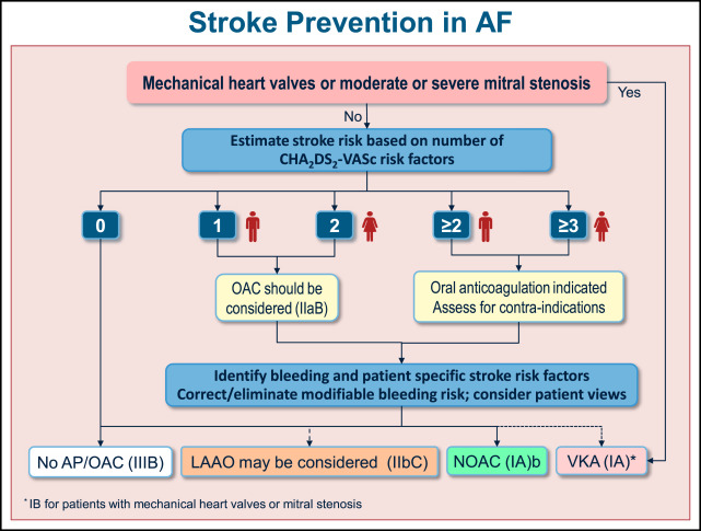 viewpoint stroke prevention in recent guidelines for the management of patients with atrial Continuous Improvment Abstract Submissions Abstract Paintings